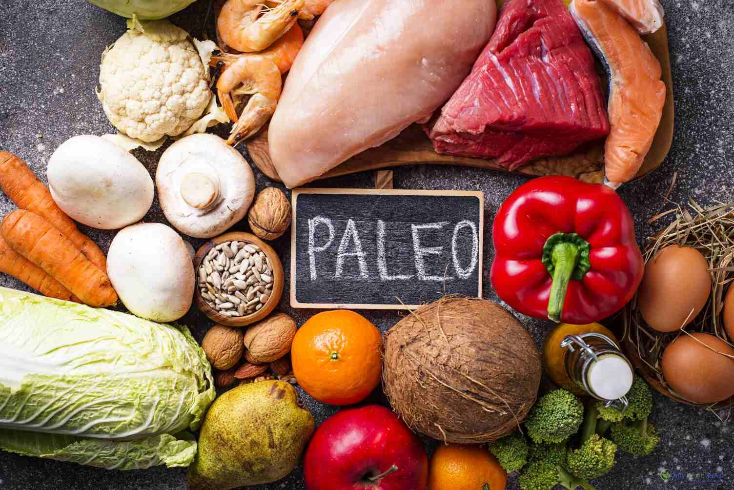 Beginners Guide on Paleo Diet: What to eat or not and how it works.