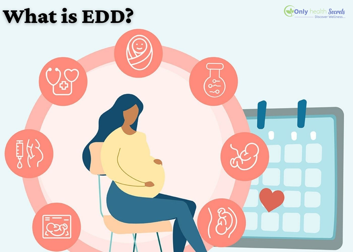 What is EDD