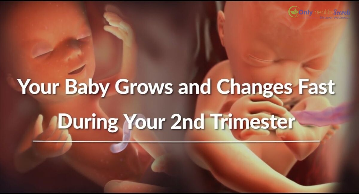 When Does the Second Trimester of Pregnancy Begin?